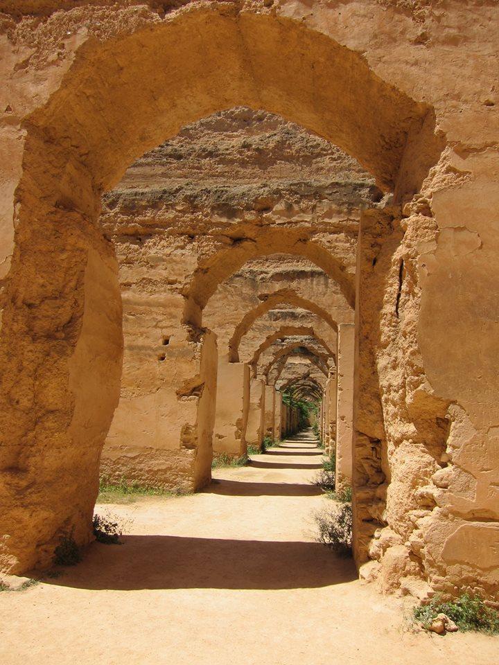 HANNA Meknes - Traveller's Tales | Moira's Morocco Adventure