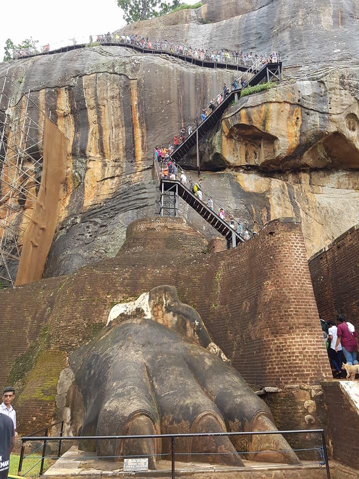 26112303 10156912932848222 2720414552885967097 n - Traveller's Tales | Explore Sri Lanka