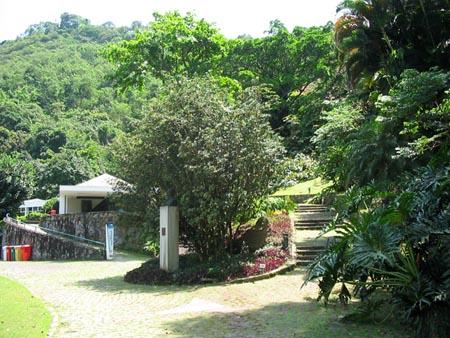 O parque é um museu de esculturas a céu aberto. Segundo Ancelmo, foi uma das primeiras favelas do Rio, que depois foi desocupada, e seus moradores deslocados para a então recém criada Cidade de Deus.