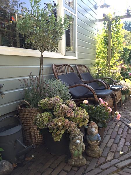 Rotan stoelen in herfsttuin