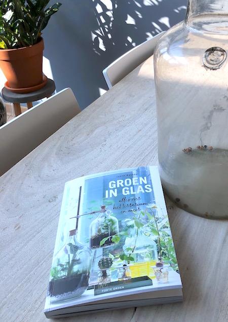 urban jungle groen in glas.jpg