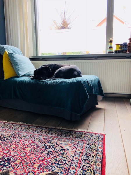 lelijke radiator woonkamer