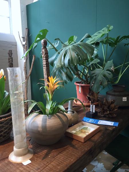 Interieur inspiratie planten