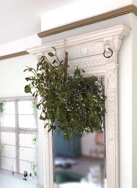 Kerst-mistletoe