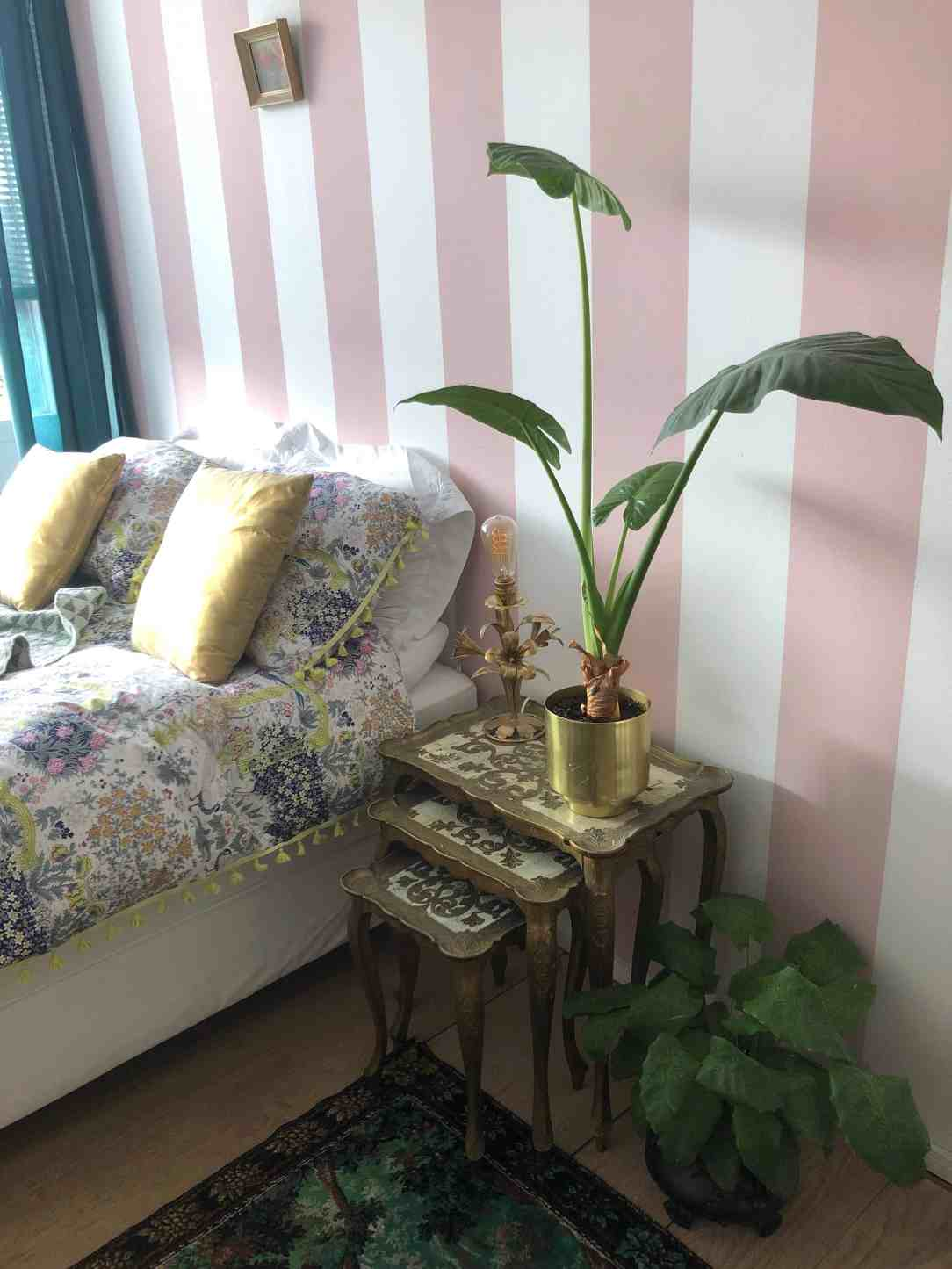 Planten in de slaapkamer voor betere nachtrust