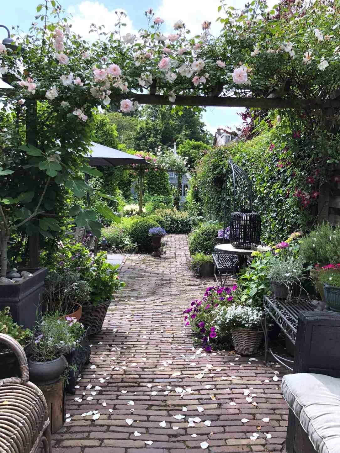 tuin in volle bloei