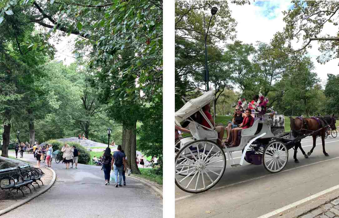 collage-Central Park-New York