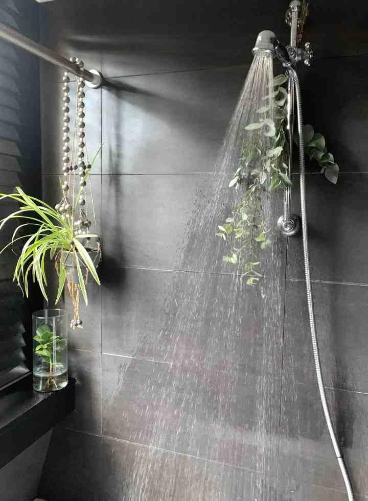 badkamer planten
