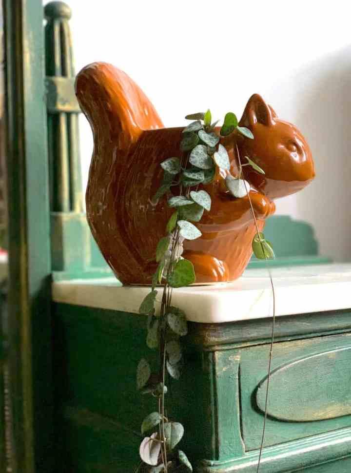 bloempot-eekhoorn