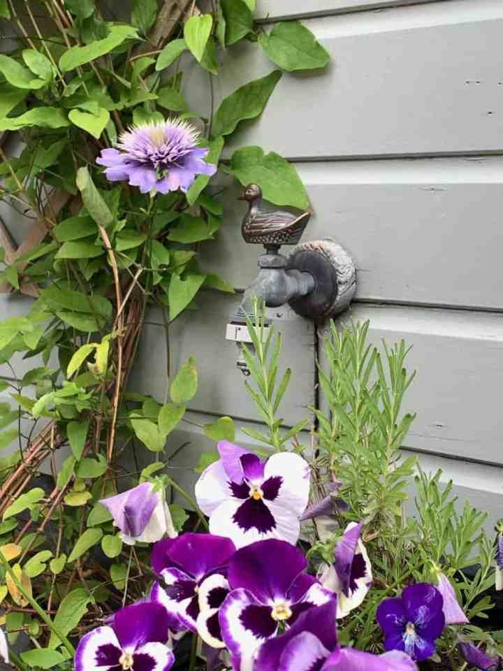 Kraantje in mijn tuin