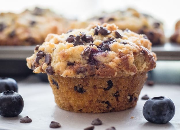 closeup of blueberry chocolate chip muffin