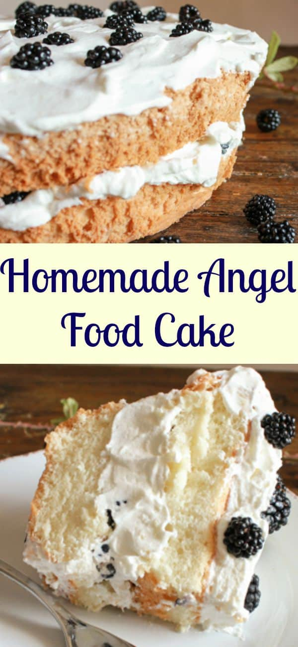 Homemade Angel Food Cake, an easy delicious made from scratch cake recipe. Best with a simple whipped cream filling and fruits and berries./anitalianinmykitchen.com