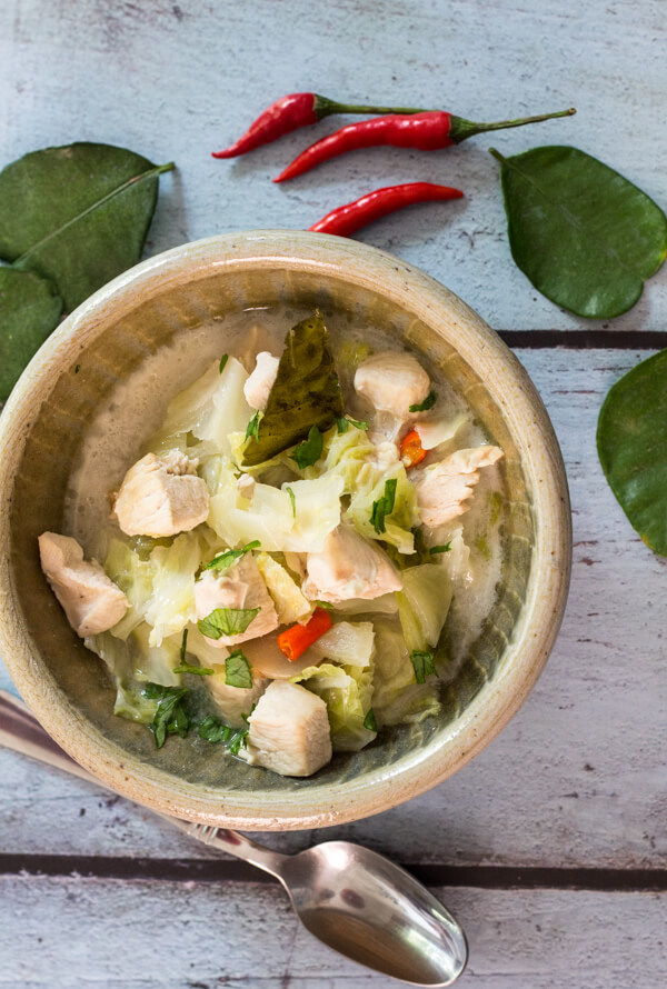 Homemade Thai Coconut Chicken Soup, is a spicy, fast and easy authentic Thai Soup Recipe, made with fresh spices, so delicious.