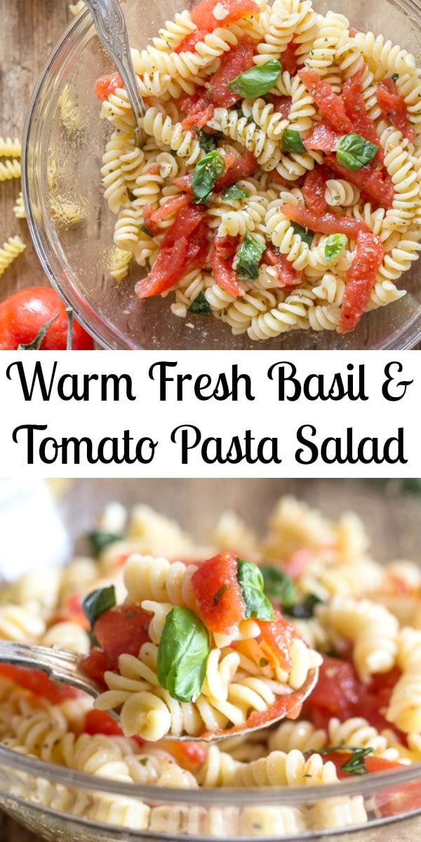 This Warm Tomato Pasta Salad is made with a few fresh ingredients including tomatoes and fresh basil. Mixed together with your favourite short pasta to create a simple tasty Summer Pasta Salad. #pastasalad #Italianrecipe #salad #pasta #tomatoes #dinner #easyrecipe #summerrecipe