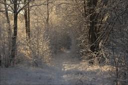 20151228_Vinterdag07