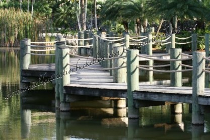 Miami www.traveldestinationbucketlist.com