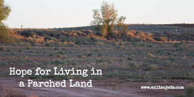 Learn how to rejoice when living in a parched land. http://wp.me/p7W1vk-dW