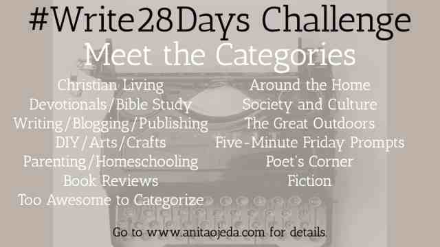 Looking for a blogging challenge to chase away the mid-winter blues? Check out the #write28days challenge! Are you in? #blogger #writer #challenge #writerslife #amwriting