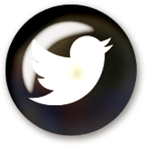 Social Icon 4 twitter