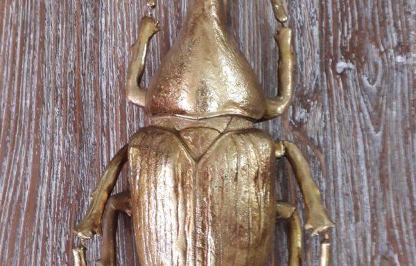 Large Golden Beetle