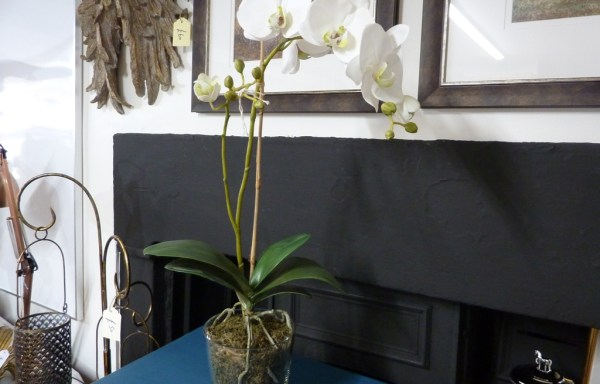 "White faux orchid with moss 25"" tall"