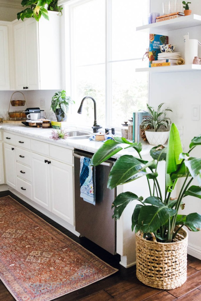 plants white kitchen open shelving loren loloi rug