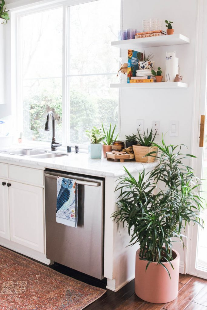 white kitchen vintage rug plants the shade store roller shades open shelves