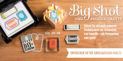 Aktion August Big Shot und Produktpakete