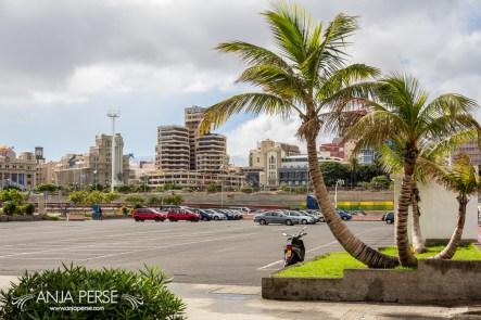 2014-12-17-SantaCruz,Tenerife-4