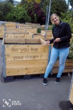 Living a dream, Amsterdam, Netherlands