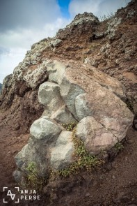 Volcanic rocks of Mount Vesuvius