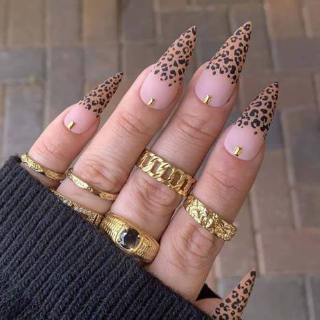 Stylish Stiletto Nail Design