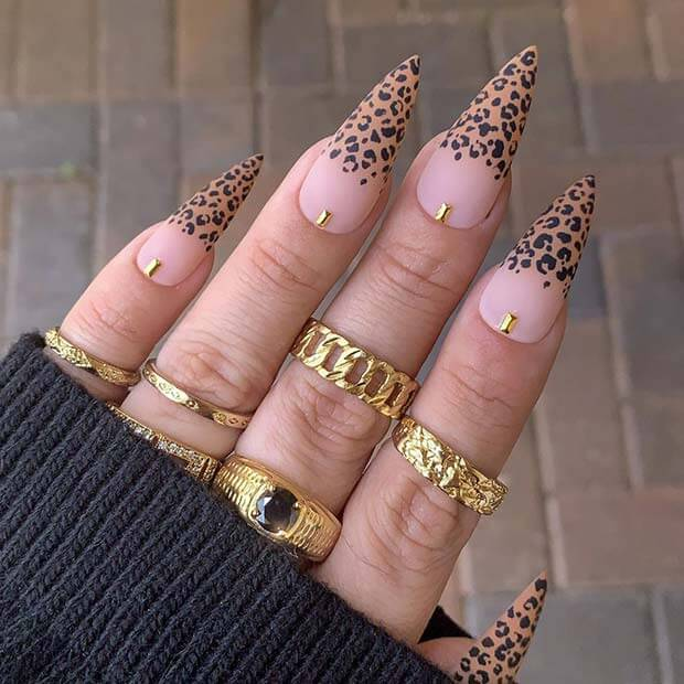 Stylish Stiletto Nail Design