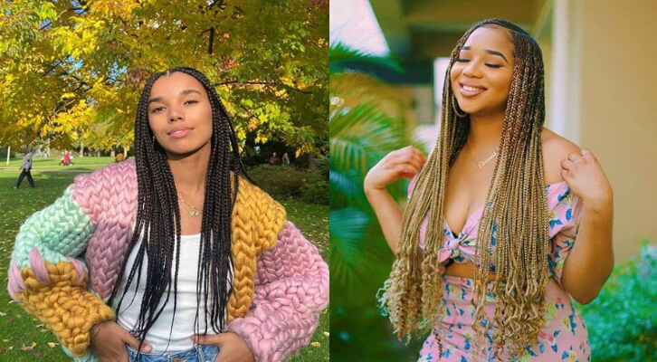 2021 Lemonade Braids That Are Awesome To Wear Now