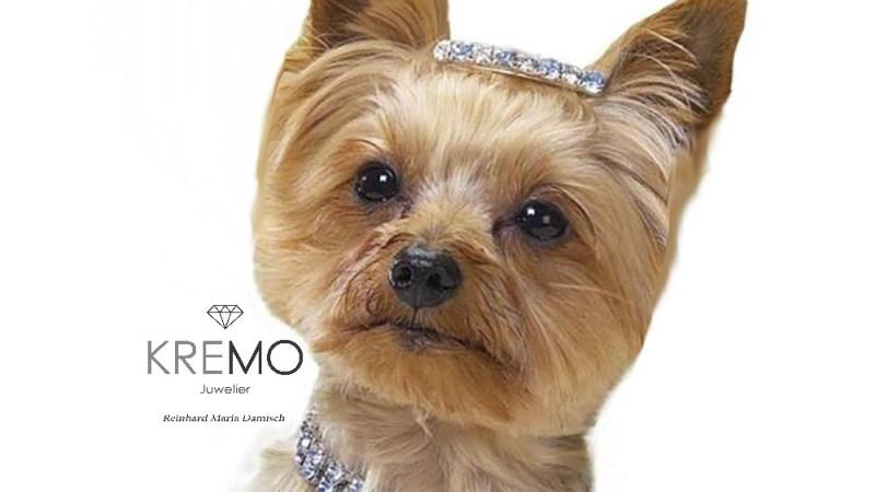 Juwelier für Tierschmuck KREMO Salzburg Juwelier Service Reparatur Tierschmuck für Hund und Katze Anfertigung Wartung Reinigung