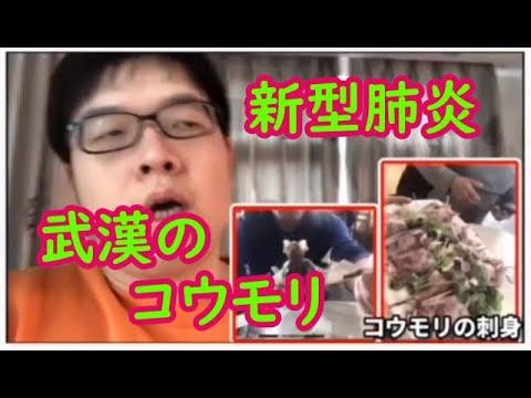 【中国の闇】武漢の新型肺炎、野生のコウモリとコロナウィルスについてのまじめな話