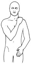 SES 11 + SES 15 bei Rückenbeschwerden