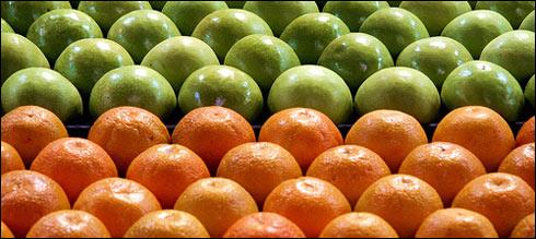 Apples vs Oranges Comparison