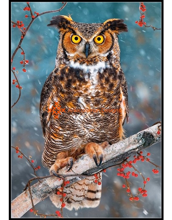 Great Horned Owl Counted Cross Stitch Patternskits Color