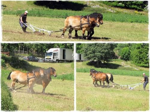 Två hästars styrka...