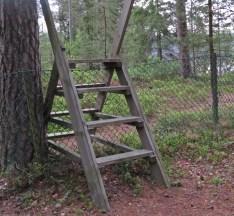 En stätta över staketet ... vem kan motstå det? Inte jag i alla fall...