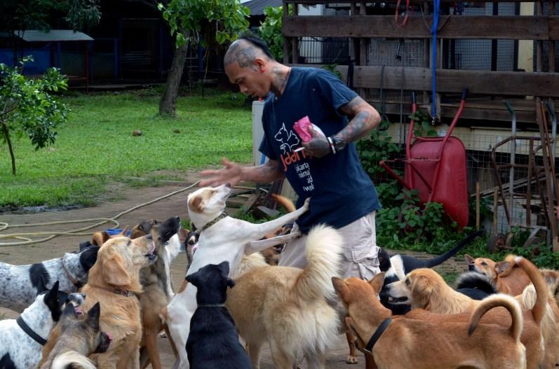 Rehabilitasi Anjing Liar-Aulia Rachman (5)