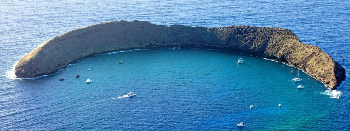 Molokini Snorkeling & Diving (Maui) | Things To Know Before You Go