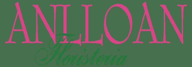 anlloan-logo-color