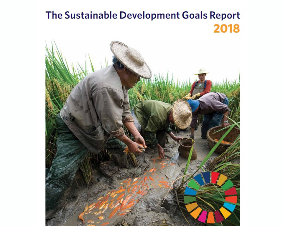 Countries embrace efforts to achieve SDGs amid mounting global challenges: UN Report