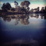 My week, with instagram