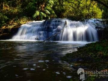 Image of Splitter Falls taken on Chasing Waterfalls trip to Lorne, Victoria