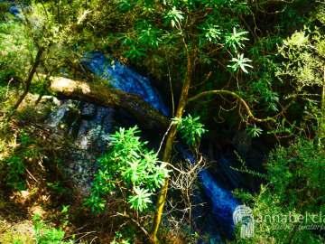 Won Wondah falls visited on Chasing Waterfalls trip to Lorne, Victoria