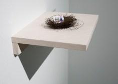 peters-nest-visual