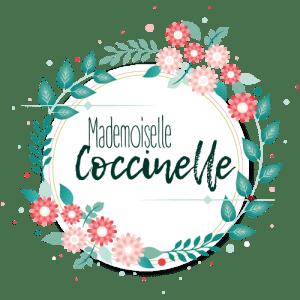 Logo et bannière pour le blog Mademoiselle Coccinelle